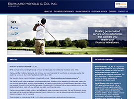 Bernard Herold & Co., Inc. website design by dzine it
