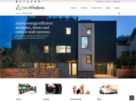 Intus Windows website design by dzine it